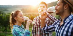 Existem oito tipos de vinhos. Sabe quais são?